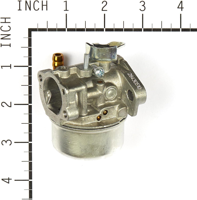Briggs /& Stratton B/&S 120202-0387-B8 120202-0387-E1 Carburetor Carb part 798653
