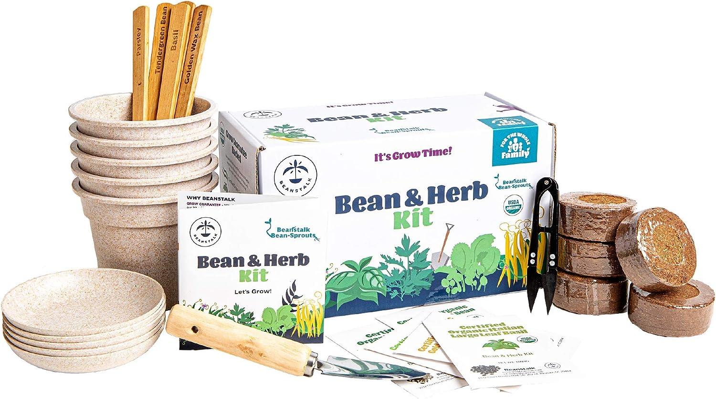 Herb and Bean Indoor Garden Kit by Beanstalk - USDA Organic Herb Garden Kit Indoor, Kids Indoor Garden Kit, Non-GMO