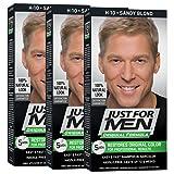 Just For Men Original Formula Men's Hair