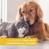 Veterinary Formula Clinical Care Ear Therapy, 4 oz. - Medicated Formula Treats Bacterial, Fungal and Yeast Infections in Dogs and Cats - Cleans, Disinfects and Deodorizes