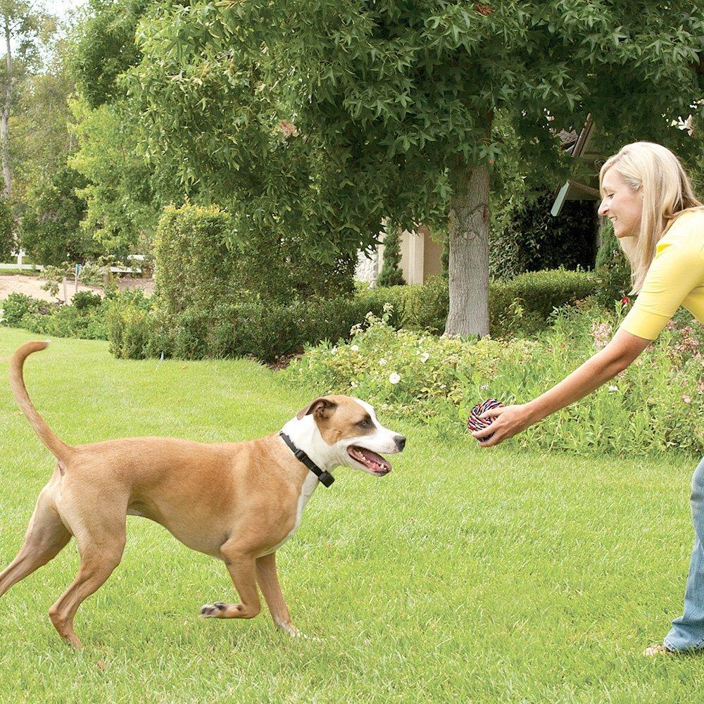amazon com besplore bite tetherball pet cotton rope toys dog clean
