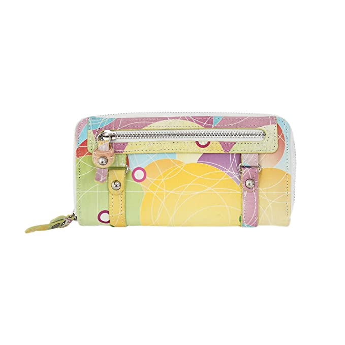 wa8101-multi - Ladies casual multicolor Circular patrones lienzo embrague cartera: Amazon.es: Ropa y accesorios