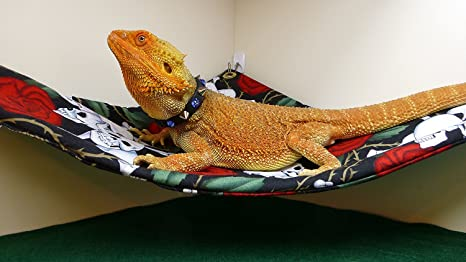 amazon    hammock for bearded dragons skulls and roses fabric with suction cup hooks  garden  u0026 outdoor amazon    hammock for bearded dragons skulls and roses fabric      rh   amazon