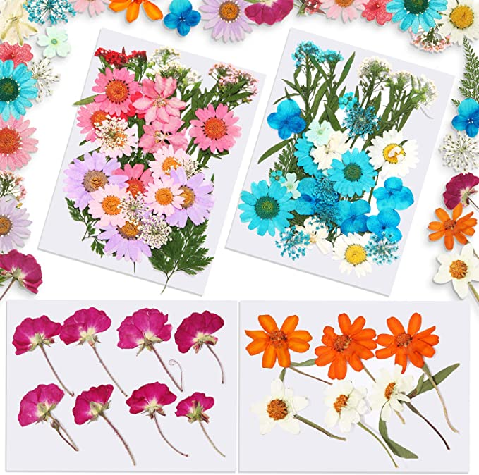 Details about  /Props Kawaii Happy Flower Plant Stems Real Flower Dried Flowers Bouquets