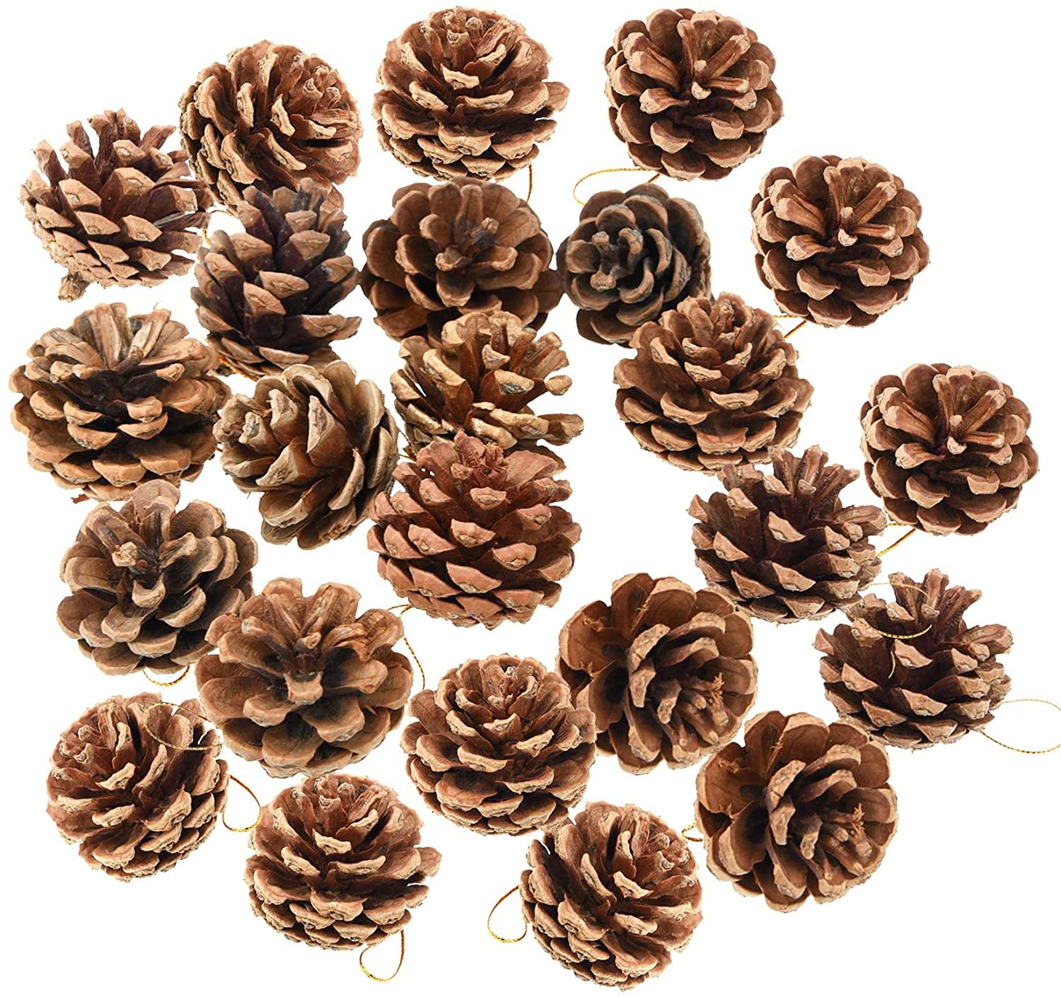 yeabwps 24 Pieces Christmas Natural Pine Cones, Rustic Pinecones Bulk Ornaments with Rope for Home Accent Decor, Fall Thanksgiving Tree Decoration Harvest Autumn Party Craft Accessory Decorations