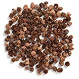 Pine Cones,Byher Mini Pinecones in Bulk for Crafts, 8OZ, Pack of 110 (Natural)