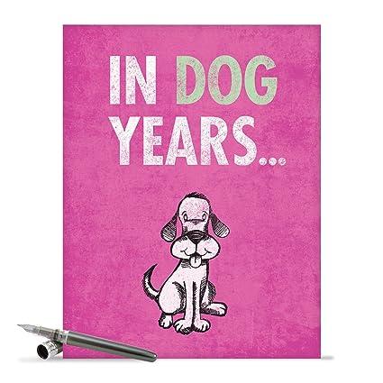Amazon J2573bdg Jumbo Funny Birthday Card Dog Years With