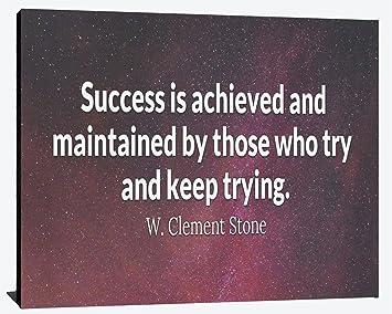 Amazon.com: El éxito logrado por aquellos que intentan y ...