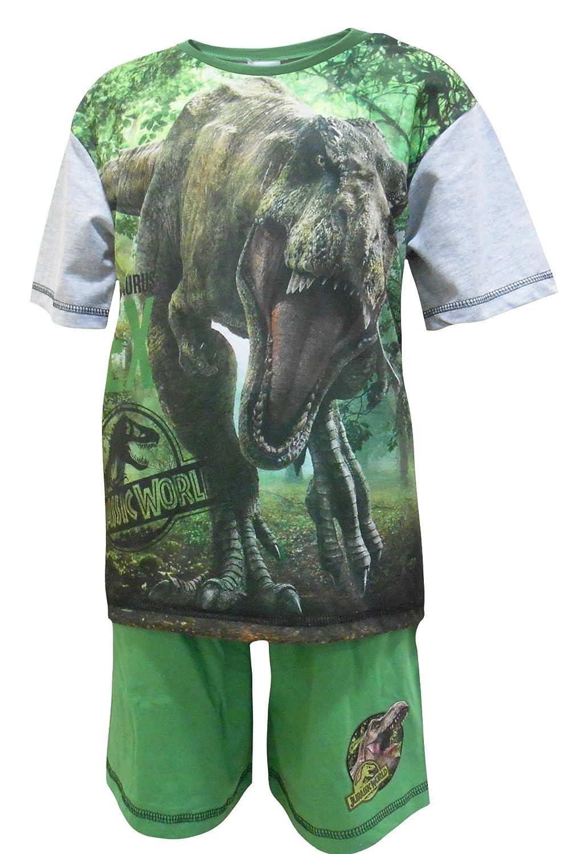Dinosaur Bad To The Bone Glow In The Dark   Short Pyjamas Pjs 4 to 8 Years