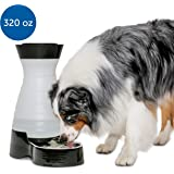 PetSafe Healthy Pet Gravity Pet Food or Water Station, Dog and Cat Feeder or Waterer