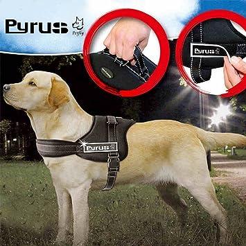 Pyrus Arnés para Perro,arnés Acolchado con algodón, cómodo y ...