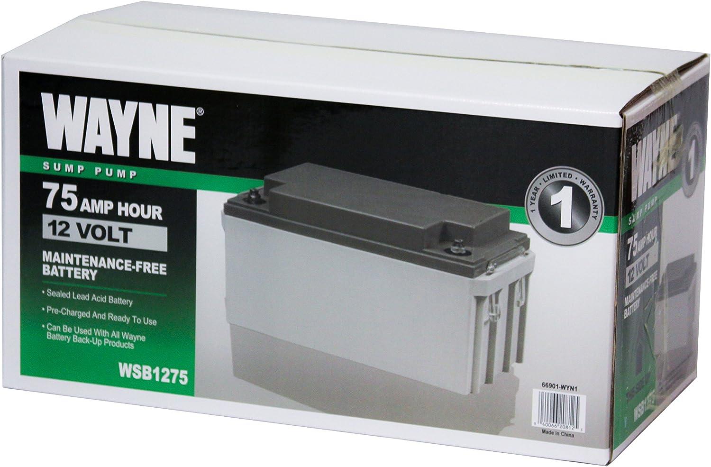 Best affordable AGM Battery - Wayne WSB1275