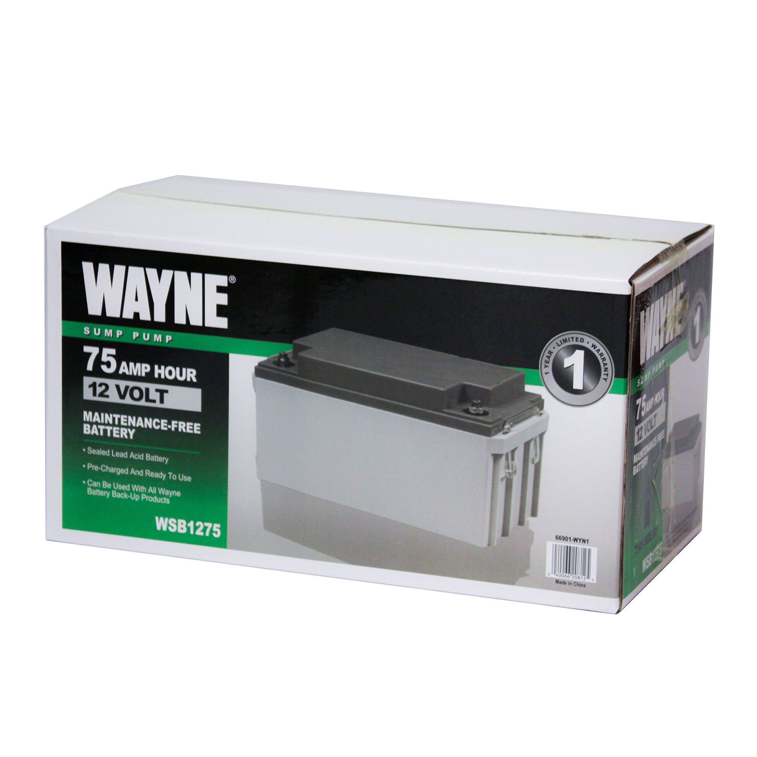 Wayne WSB1275 75Ah AGM Sealed Lead Acid Battery by Wayne