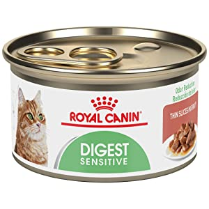 Royal Canin Digest Sensitive Gravy Canned Wet Cat Food
