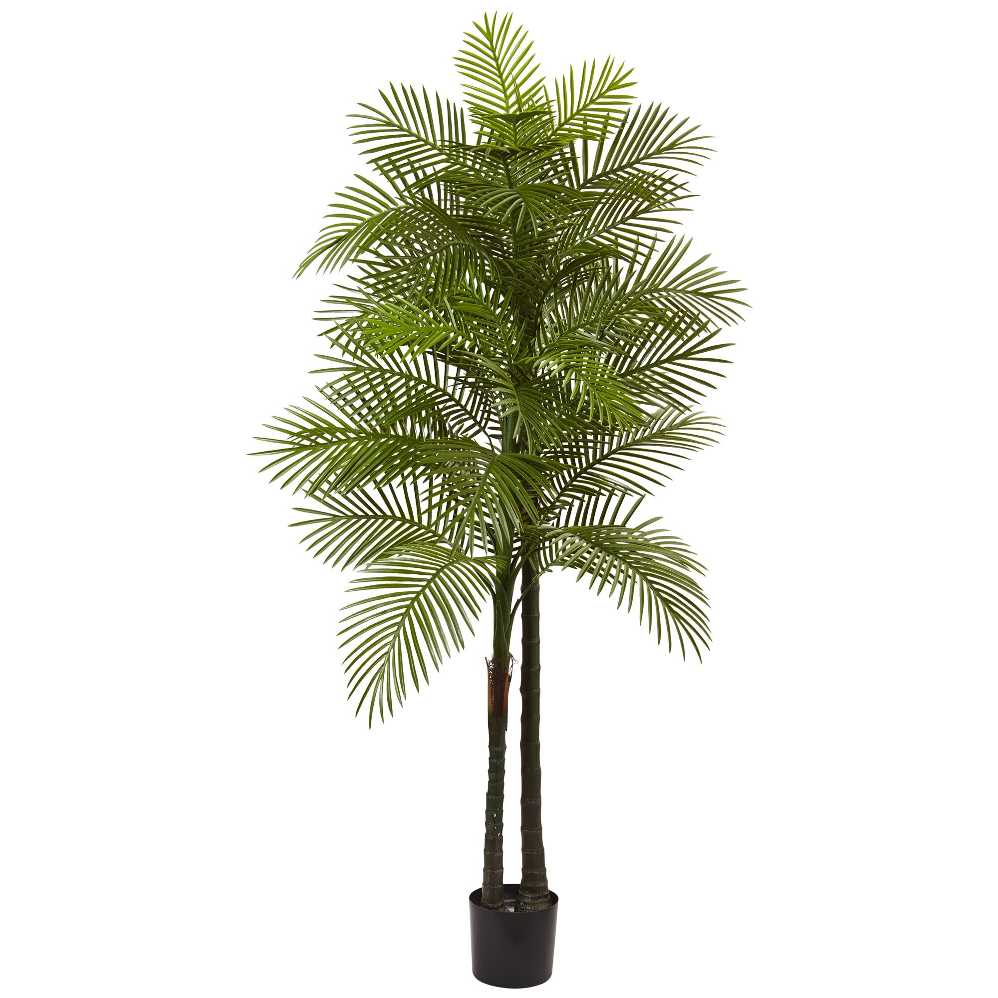Nearly Natural 5480 7' Double Robellini Palm Tree UV Resistant by Nearly Natural