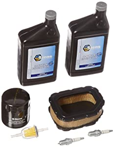 Stens 785-616 Engine Maintenance Kit For Kohler 32 789 01-S
