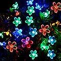Solar String Lights, 22ft 50 LED Blossom String Lights, Waterproof Flower String Lights Outside