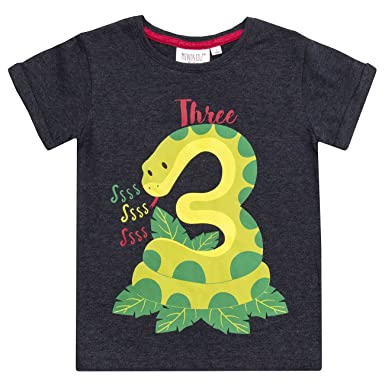 6c8a5924 Childrens/Boys/Girls Birthday/I Am/Age Number T-Shirt/1 2 3 4 5 6 Year (3  Years Boy): Amazon.co.uk: Clothing