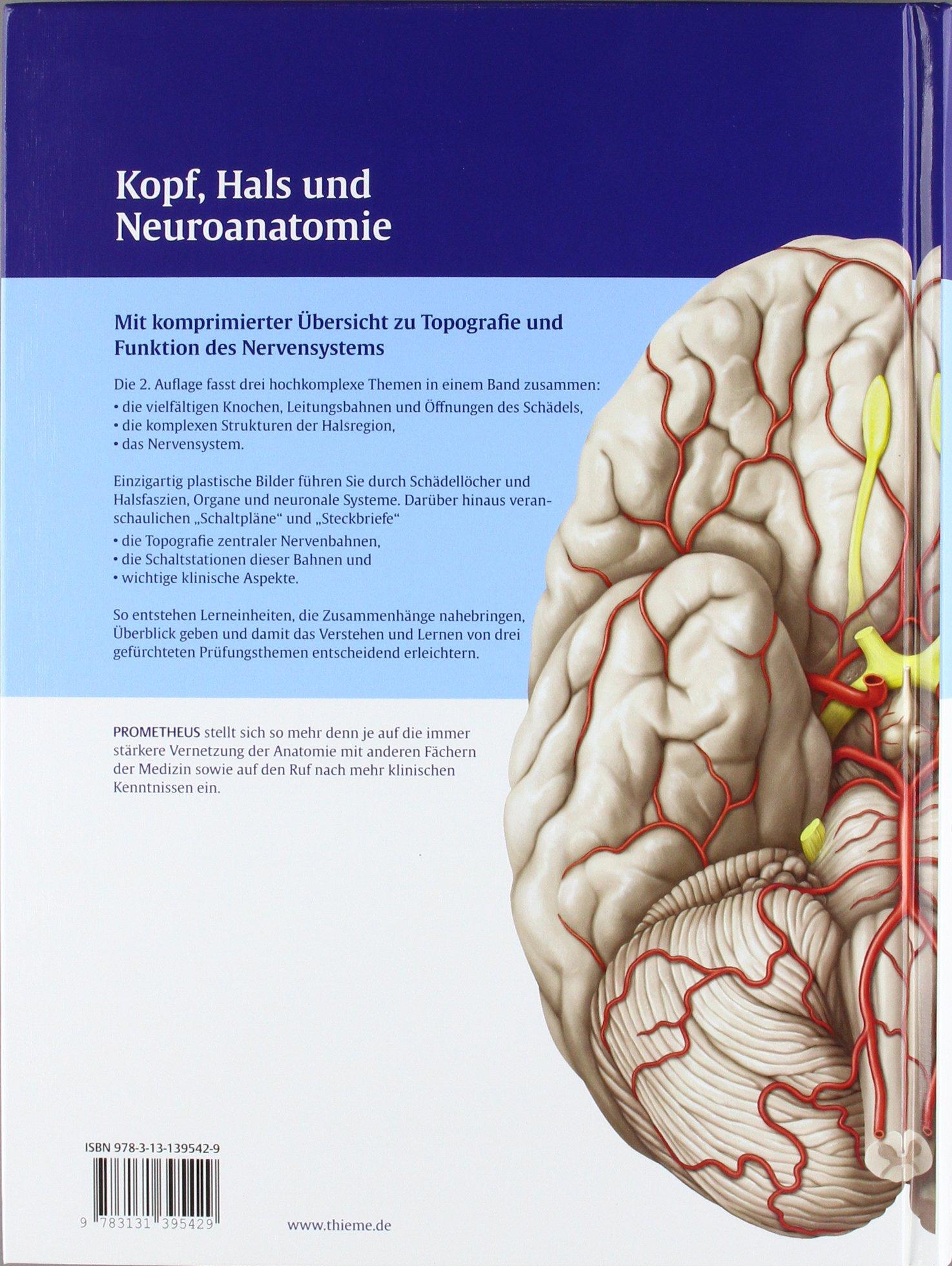 PROMETHEUS LernAtlas der Anatomie: Kopf, Hals und Neuroanatomie ...