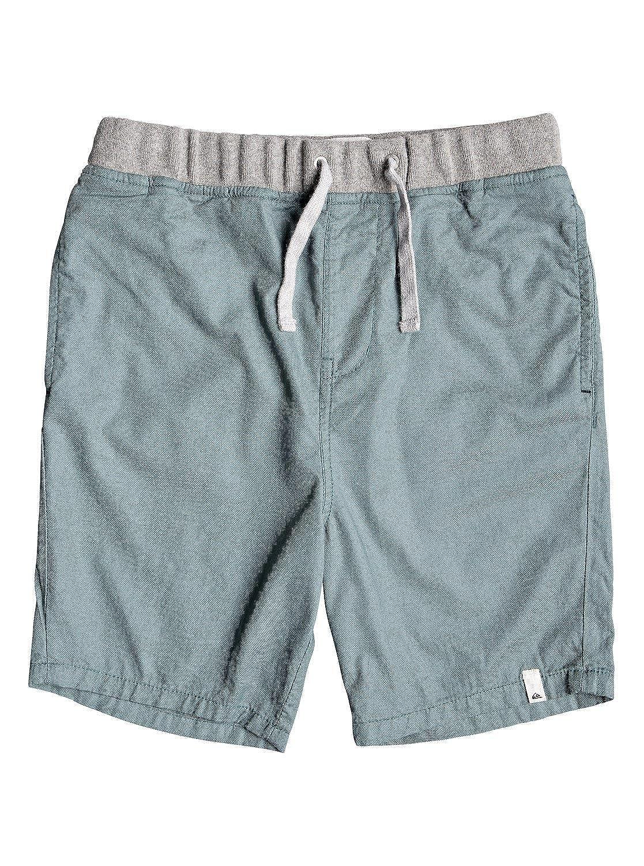 600e396eec Quiksilver Boys Seaside Coda Walk Short Youth