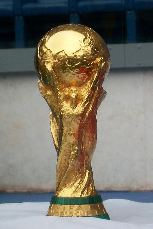 Trofeo Coppa Del Mondo Calcio World Cup Trophy Fifa  Cm Brasile