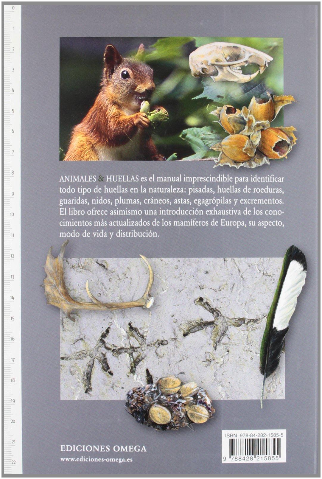 ANIMALES & HUELLAS (GUÍAS DEL NATURALISTA- MAMÍFEROS): Amazon.es: OLSEN, LARS-HENRIK, PARDOS, MONTSERRAT: Libros