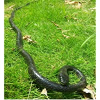 Epaler Rubber Lifelike Snakes Scary Gag Gift Incredible Creatures Chain Snakes 47 Rain Forest Snake Toys Wild Life Snakes
