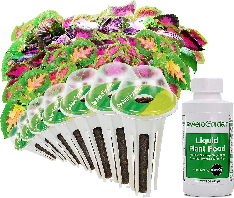AeroGarden Colorful Coleus Flower Seed Pod Kit, 7