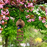 SunGrow Bird House with Ladder, Nesting Home and