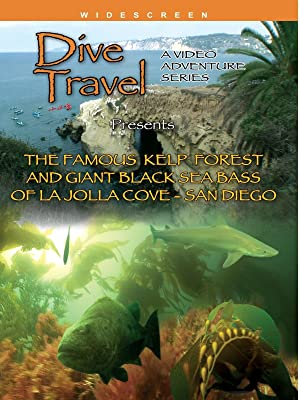 Amazoncom Dive Travel The Famous Kelp Forest And Giant Sea Bass
