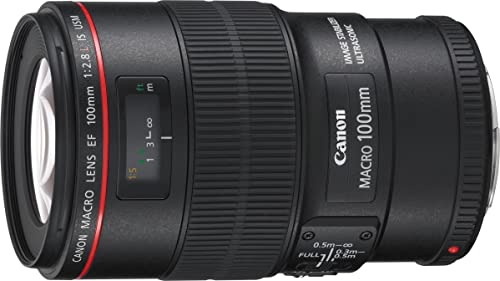 Canon EF 100 mm f2.8L Macro IS USM Lens