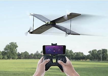 Amazon Parrot Swing Flypad Camera Photo