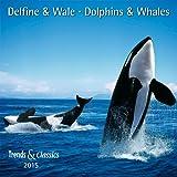 Delfine und Wale - T & C-Kalender 2015