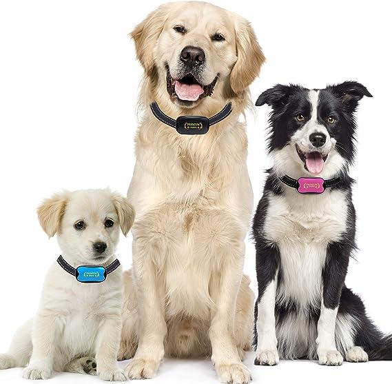 Premium Paws Collar Anti Ladridos, Collar Antiladridos, pequeño ...