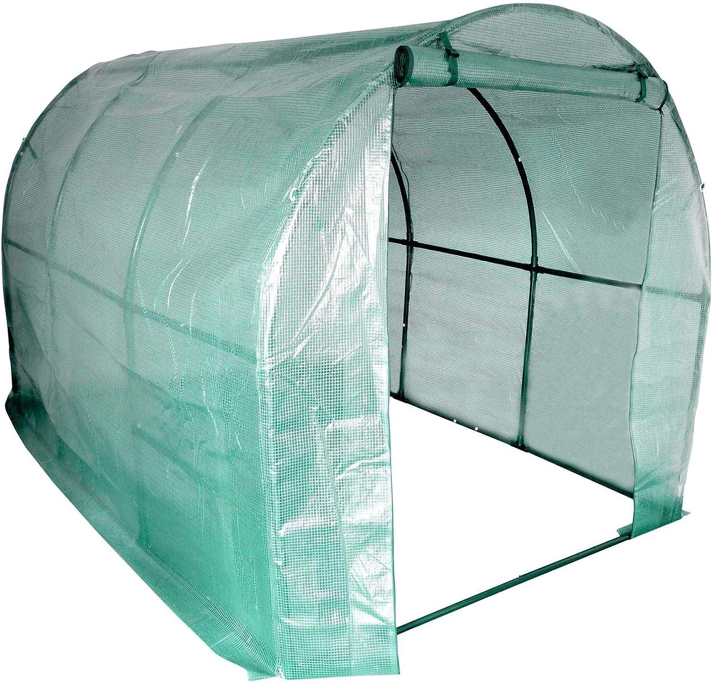 copertura resistente e rinforzata Serra a tunnel per frutta e verdura ampia