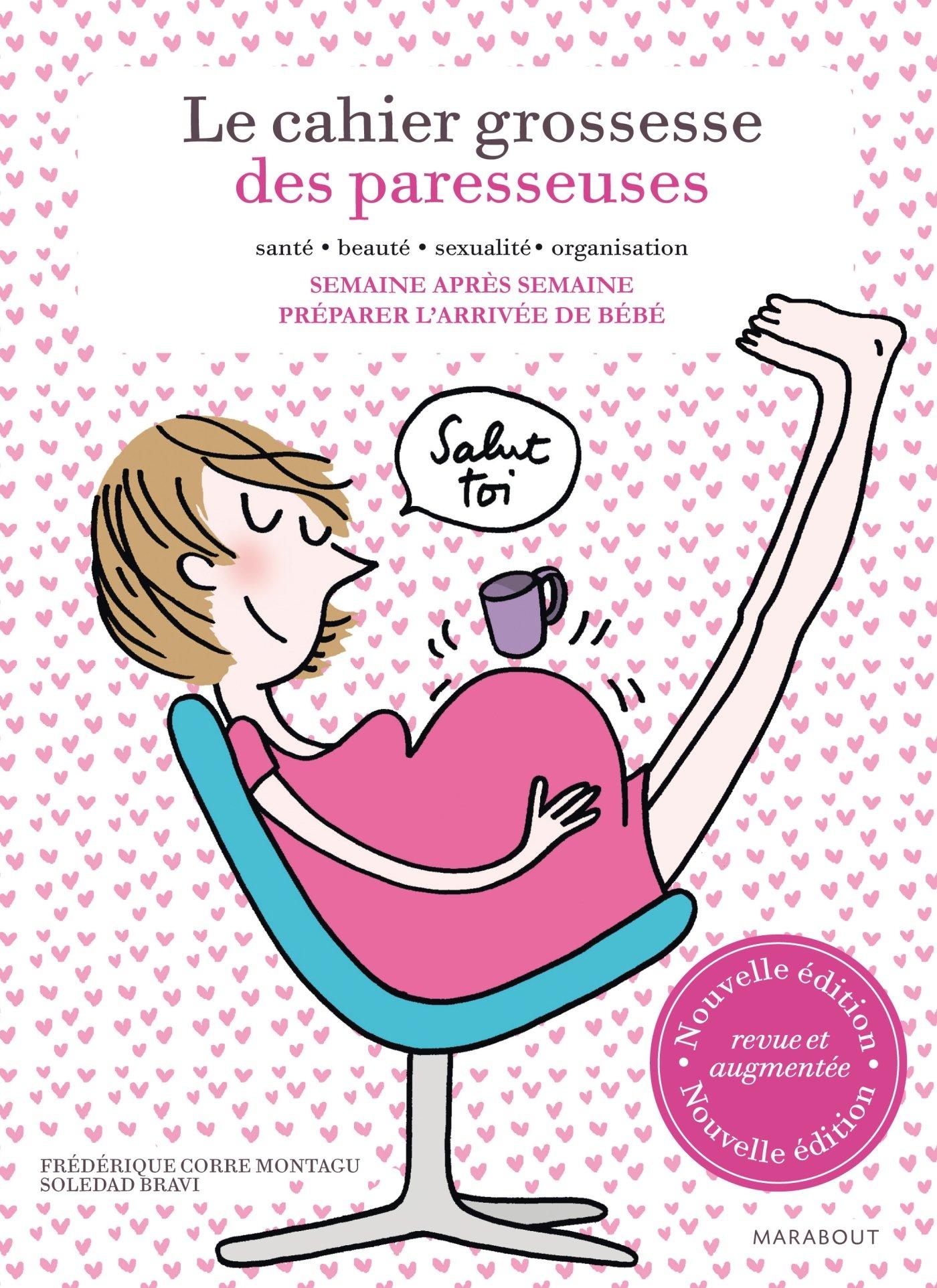 Amazon Fr Le Cahier Grossesse Des Paresseuses Frederique