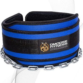 Premium Dip Belt con cadena de DMoose Fitness - Cadena de acero ...
