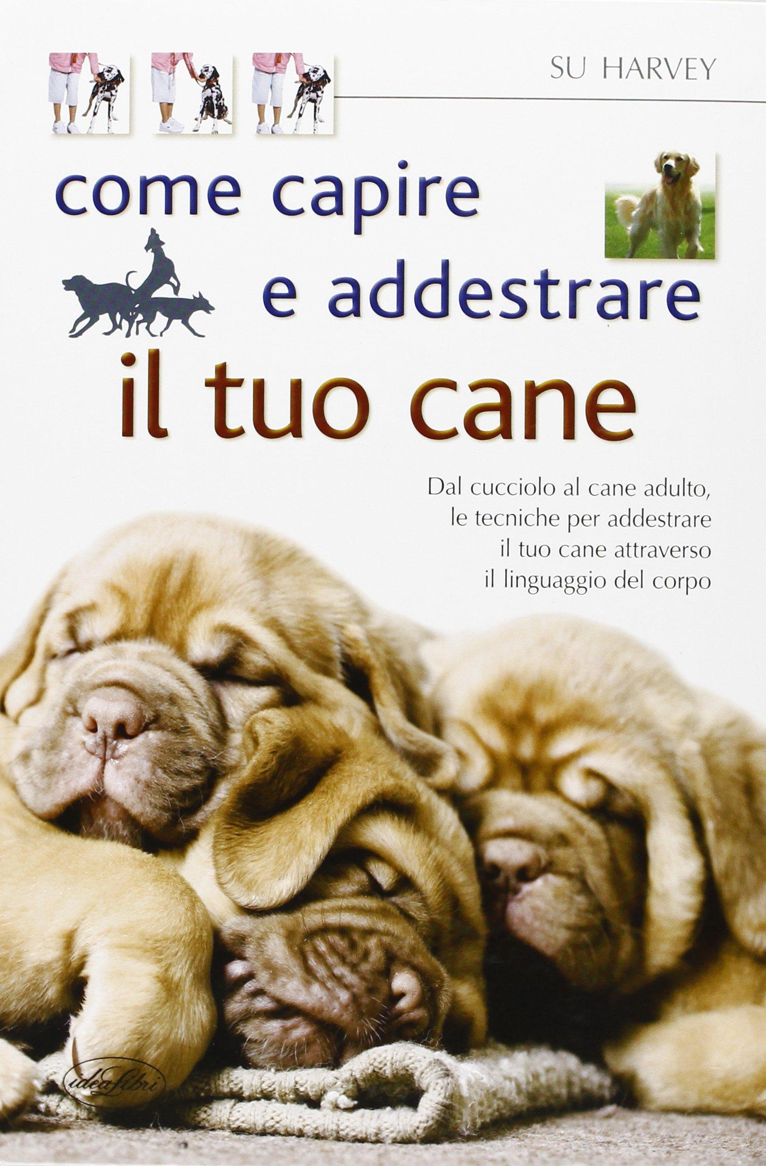 Come capire e addestrare il tuo cane Copertina flessibile – 31 mag 2012 Su Harvey Idea Libri 8862620799