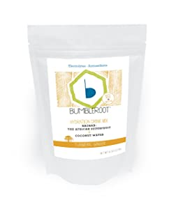 Bumbleroot Foods Superfood Hydration Drink Mix Pouch, Turmeric Ginger, 8 oz.