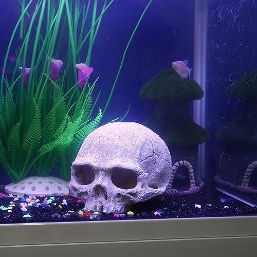 Exotic Environments Skull Aquarium Ornament