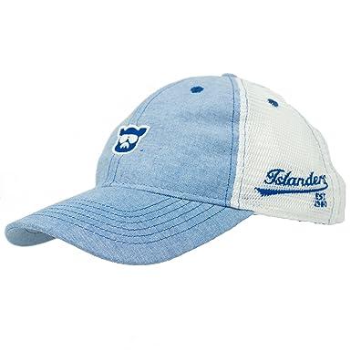 cd732b70d0c50 Amazon.com  Islanders Pig Face Oxford Blue Trucker Hat  Clothing