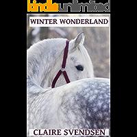 Winter Wonderland (Show Jumping Dreams ~ Book 13)