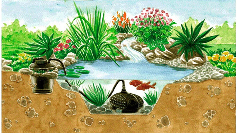 Scenery bild Pond filter