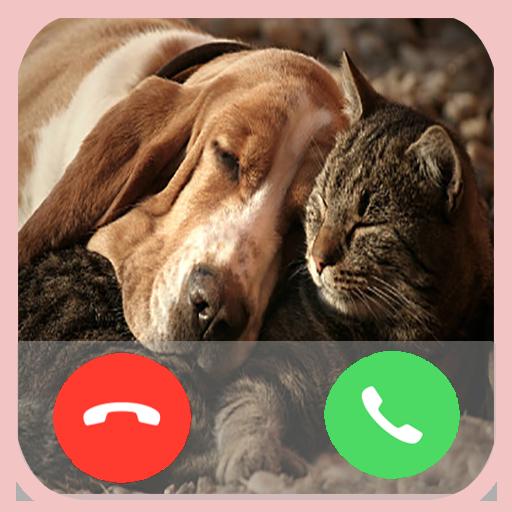 Pet Animal Call
