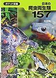 日本の爬虫両生類157 (ポケット図鑑)