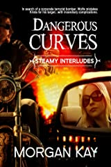 Dangerous Curves: A Romantic Comedy (Steamy Interludes Book 8) Kindle Edition