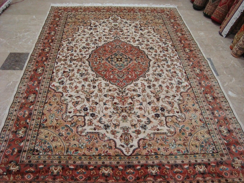 Awesome Aina Medallion Oriental Area Rug Hand Knotted Wool