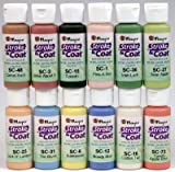 Mayco Stroke and Coat Wonderglaze for Bisque Set #3 - Set of 12 Assorted Colors in 2 Oz Bottles