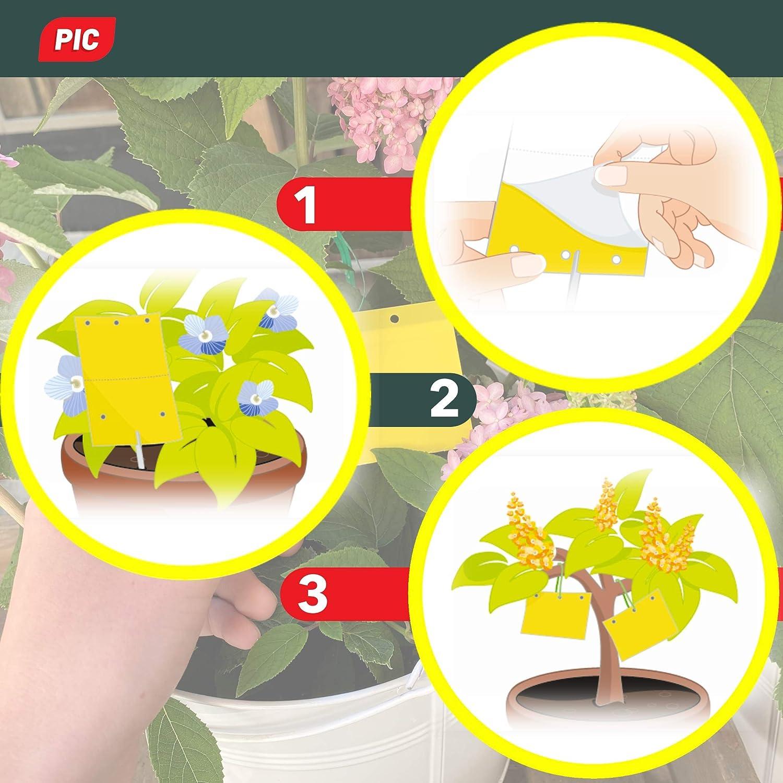 Thripsen und wei/ße Fliegen 40 Gelbsticker Blattl/äuse Zuhause und auf dem Balkon Minierfliegen PIC Gelbtafeln Gelbfalle perfekt gegen Ungeziefer Gegen Trauerm/ücken
