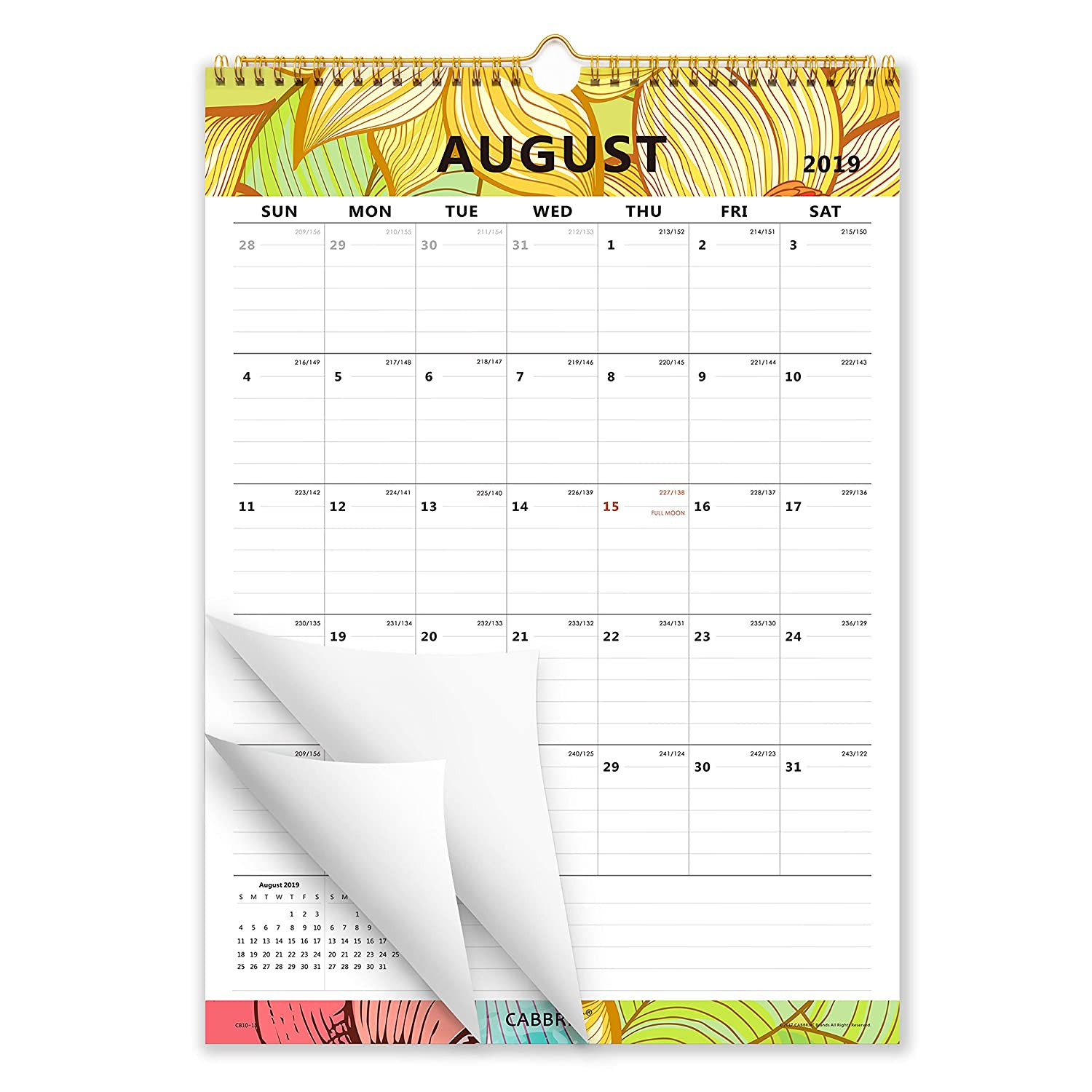 Cabbrix 2019-2020 Monthly Wall Calendar, Academic, 17 x 12 Inches, Wirebound, Colourful